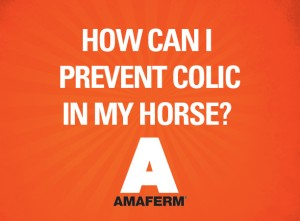 Reduce Colic in Horses