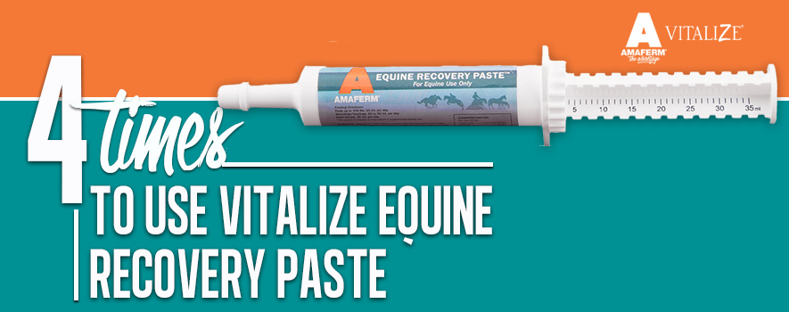4 Times to Use Vitalize Recovery Paste