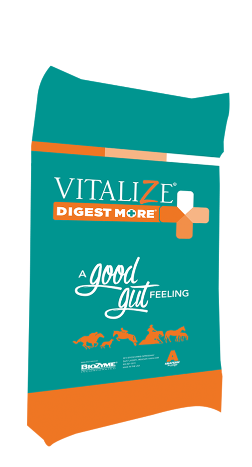 Vitalize Equine Digest More Plus