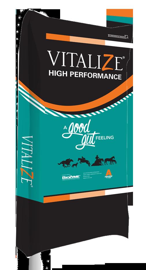 Vitalize Equine High Performance