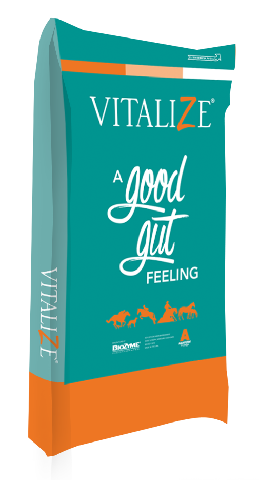 Vitalize Equine Free Choice
