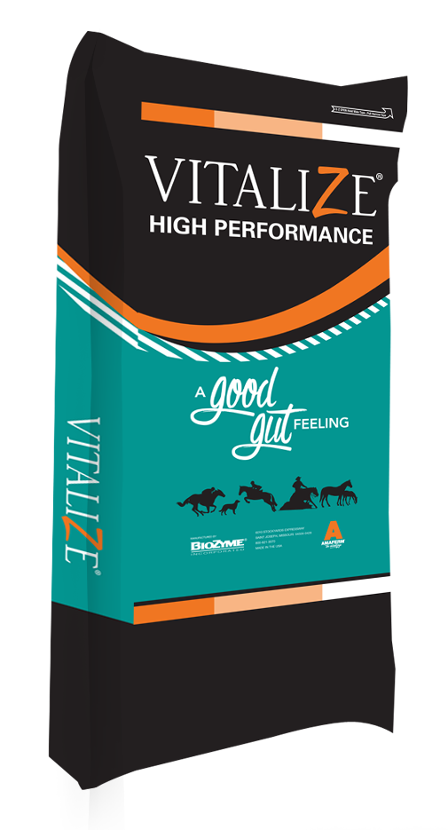 Vitalize Equine High Performance